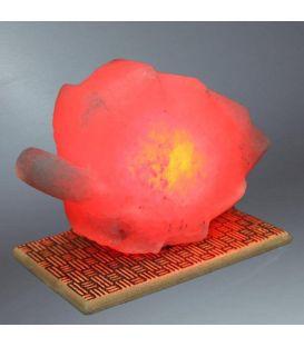 Kırmızı Yaprak Çankırı Tuz Lamba