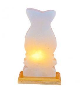 Abajur tuz lamba(11)