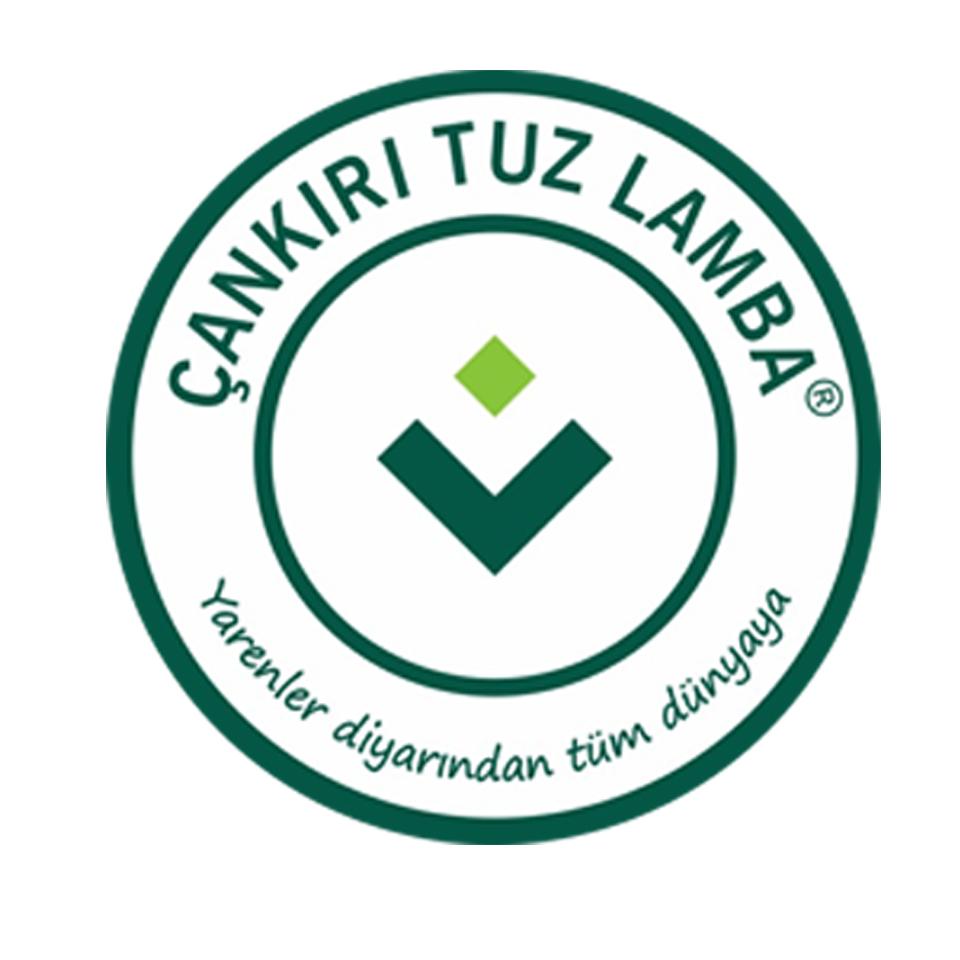 Çankırı Tuz Lamba Logo
