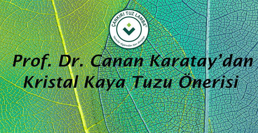Prof. Dr. Canan Karatay'dan Kristal Kaya Tuzu Önerisi