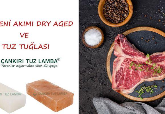 Etin Yeni Akımı Dry Aged ve Tuz Tuğlası